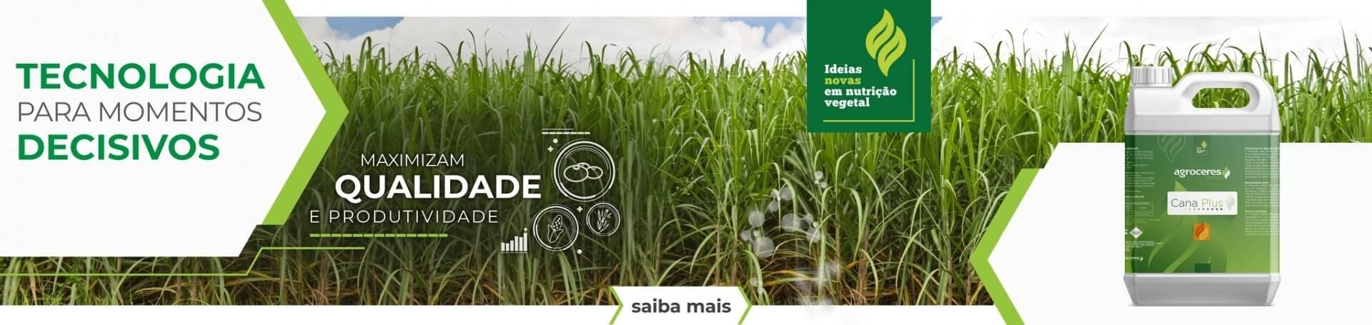 Banner - Agroceres Binova